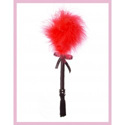 Plume Fouet Rouge Strass Rouge